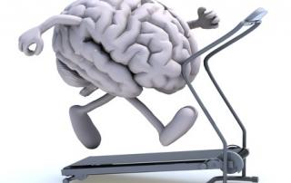 Esc Ginnastica al cervello mente Mindful